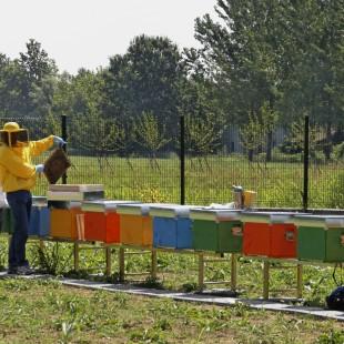 L'innovazione scientifica per l'agricoltura